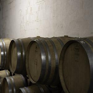 Wine cellar, Private Tours